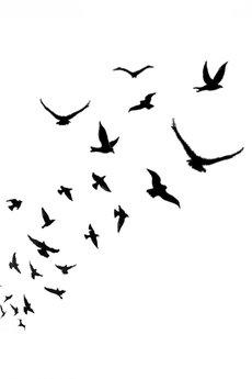 do.ME* - tatuaż zmywalny do.ME* , klucz ptaków