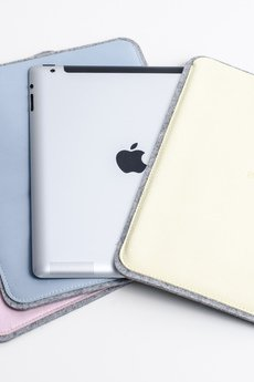 Pastel case (2)