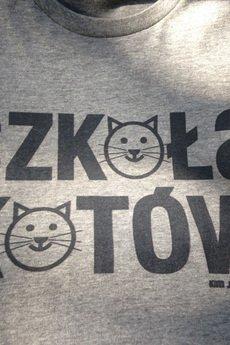 Kurdemol - Szkoła kotów