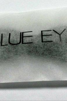 BLUE EYE POP - Czarna muszka w kropki