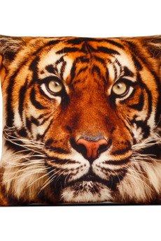 Tygrys 1 glowne