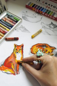 Missspark botanical foxes drawings1