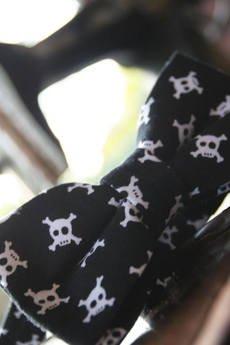 EDYTA KLEIST - Mucha Skull Style