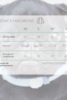 KOZACKI MOPS - Spódnica Macarons błękitny