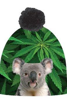 Koala 927a6c