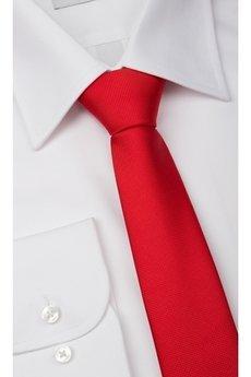 Próchnik - Krawat WL16 5