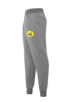 ZookiWear - Spodnie Loose Szare Panda