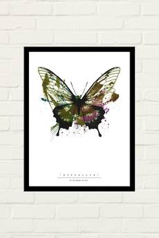 GAU Home - BUTTERFLY PAINTED Plakat 30x40