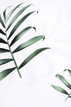 xxx-Alkopoligamia - T-shirt loveyourlife. Palm Biały