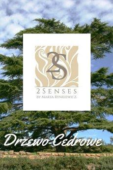 2 senses by Marta Rynkiewicz - Świeca do masażu 2 senses by Marta Rynkiewicz Kora cynamonowa i drzewo cedrowe