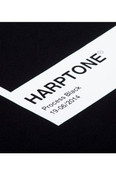 HARP TEAM - BLUZA HARPTONE
