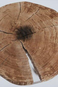 Forrest - Stolik kawowy dębowy z plastra drewna z żywicą