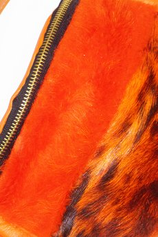 ekorre - ekorre orange  001